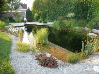 ... Swimming Ponds And Natural Swim Ponds (10) ...