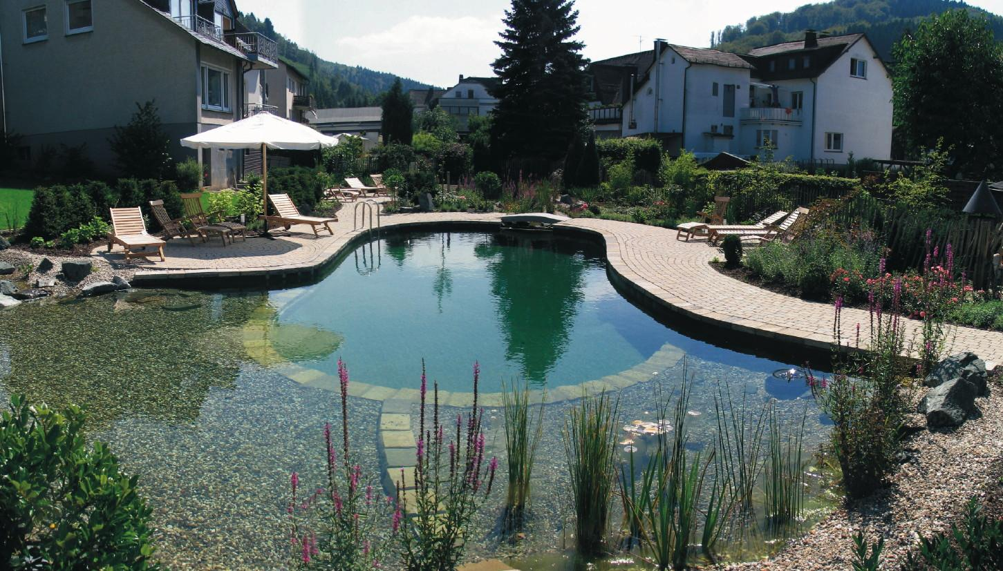 Natural swimming natural swimming pools for Koi pond swimming pool