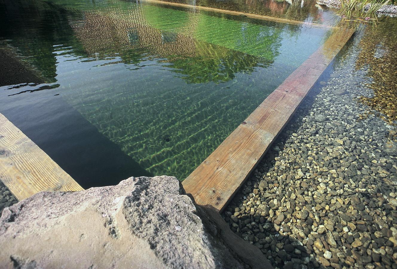 ... Swimming Ponds And Natural Swim Ponds (9) ...