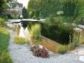 swimming ponds and natural swim ponds (10)