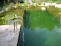 swimming ponds and natural swim ponds (2)