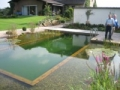 swimming ponds and natural swim ponds (4)