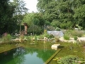 swimming ponds and natural swim ponds (5)