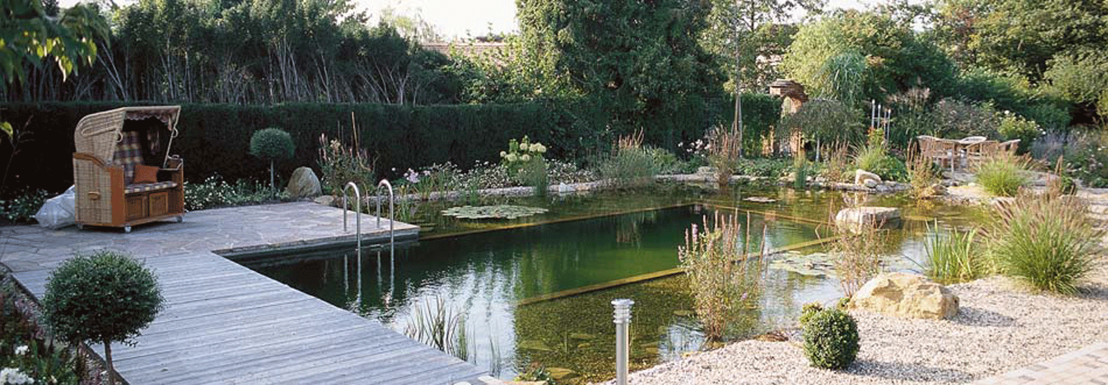 Natural swimming natural swimming pools for Pond to swimming pool conversions